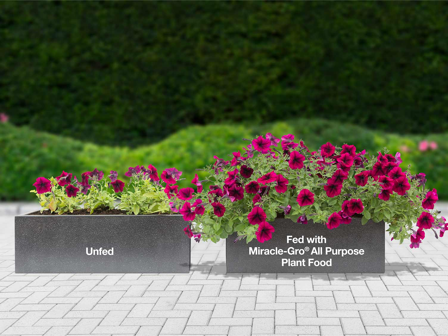 How Does a Fertilizer Work? | Love The Garden