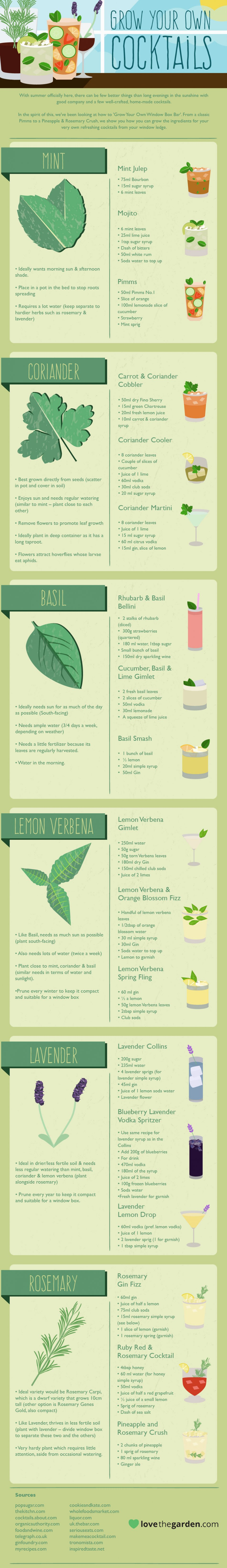 How to grow your own cocktails infographic