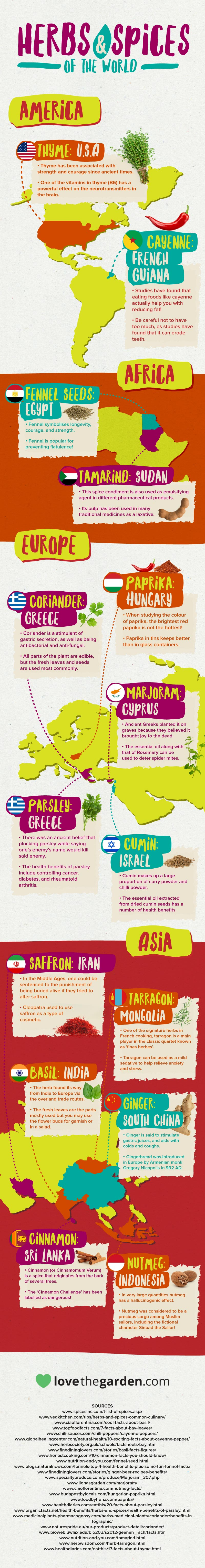 The herb and spice world map infographic
