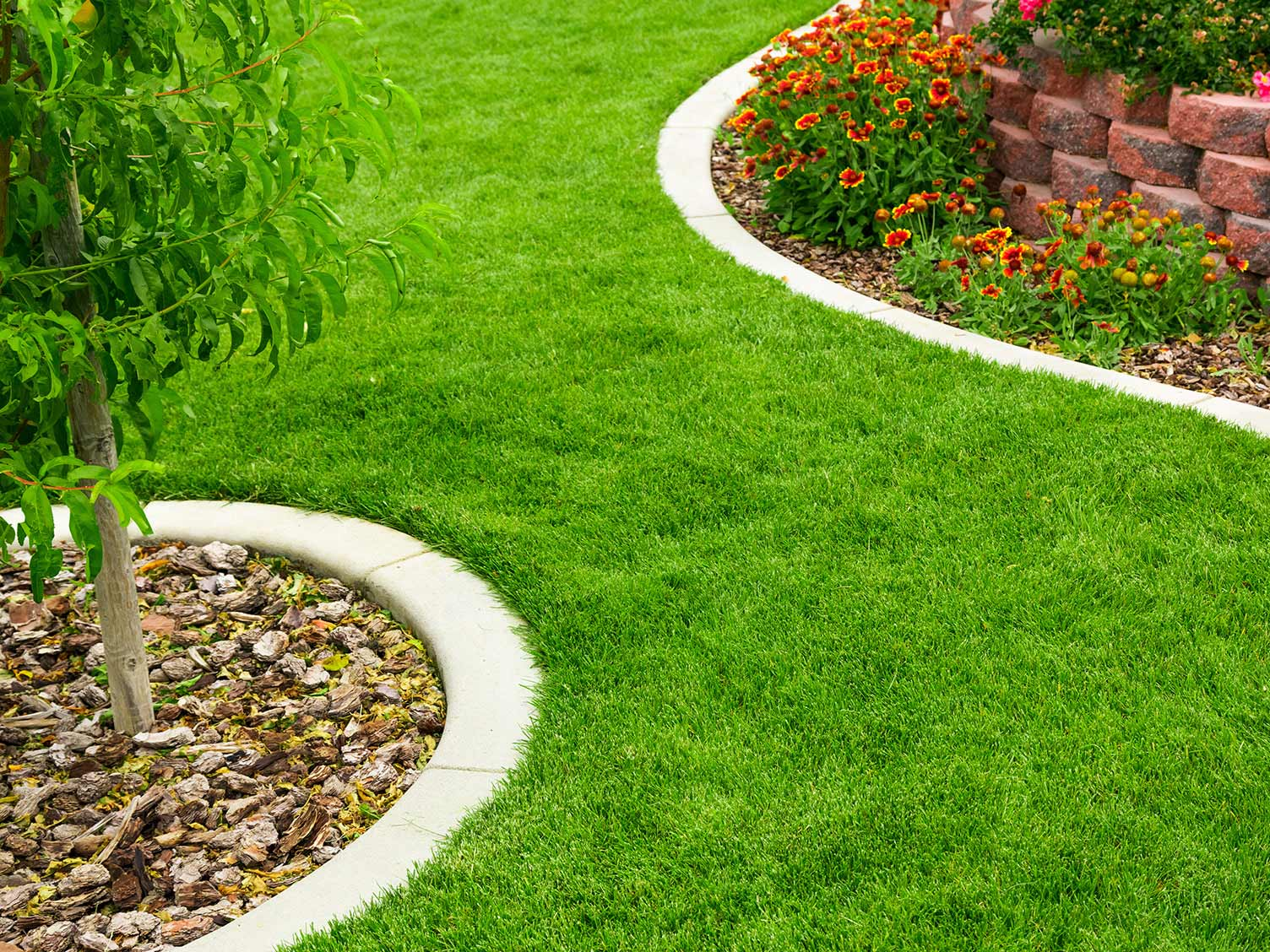 The complete guide to lawn edging | lovethegarden