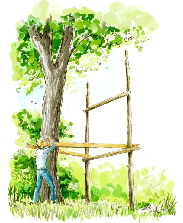 Cabane dans les Arbres : La Pause Jardin, ma cabane dans ...