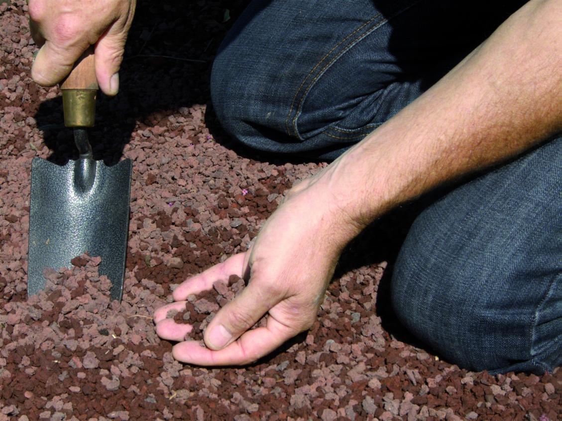 Paillis Noix De Coco paillage naturel pour le jardin, comment le choisir - la