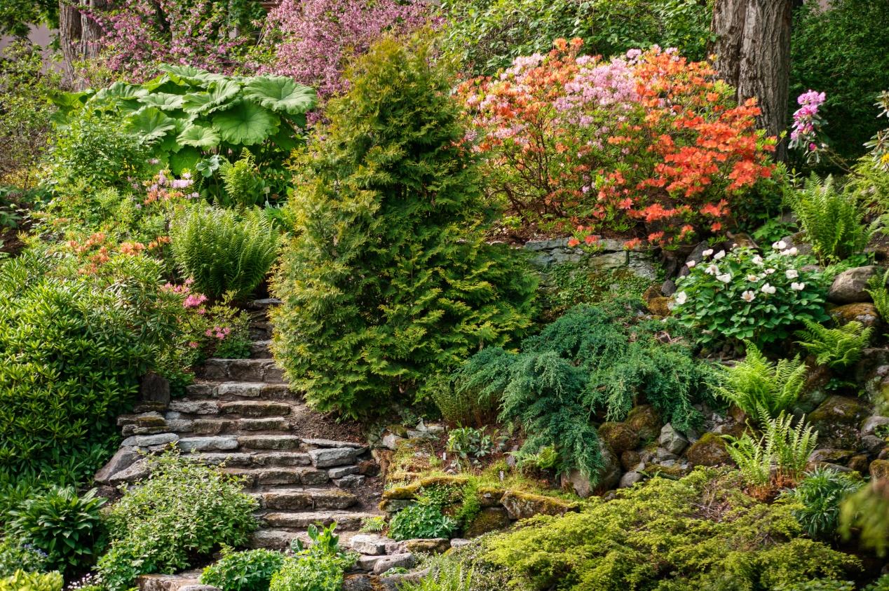 Jardin En Pente Comment Faire un jardin en pente : agencer et aménager un jardin en pente