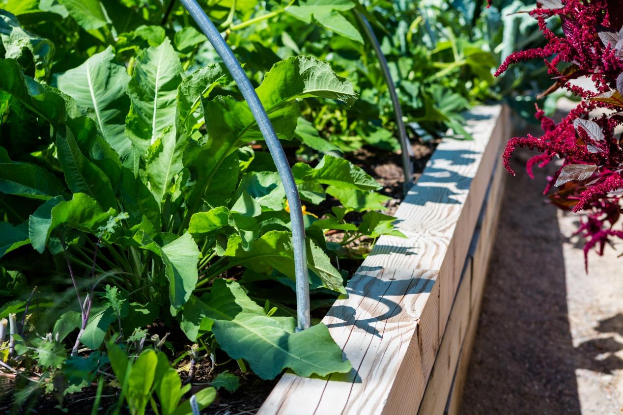 Comment Aménager Son Jardin En Pente un jardin en pente : agencer et aménager un jardin en pente