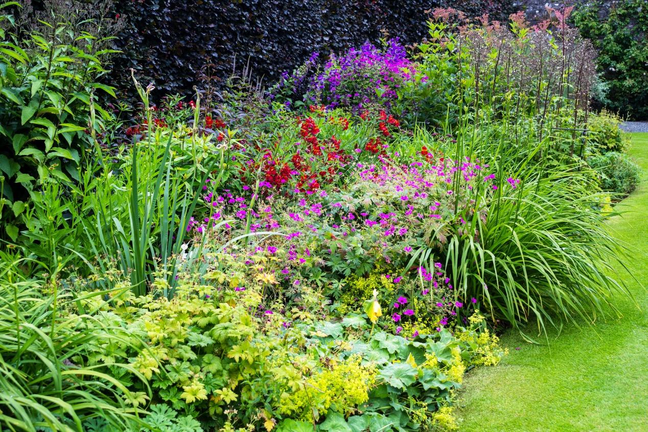 jardin anglais la pause jardin tout sur les jardins l. Black Bedroom Furniture Sets. Home Design Ideas