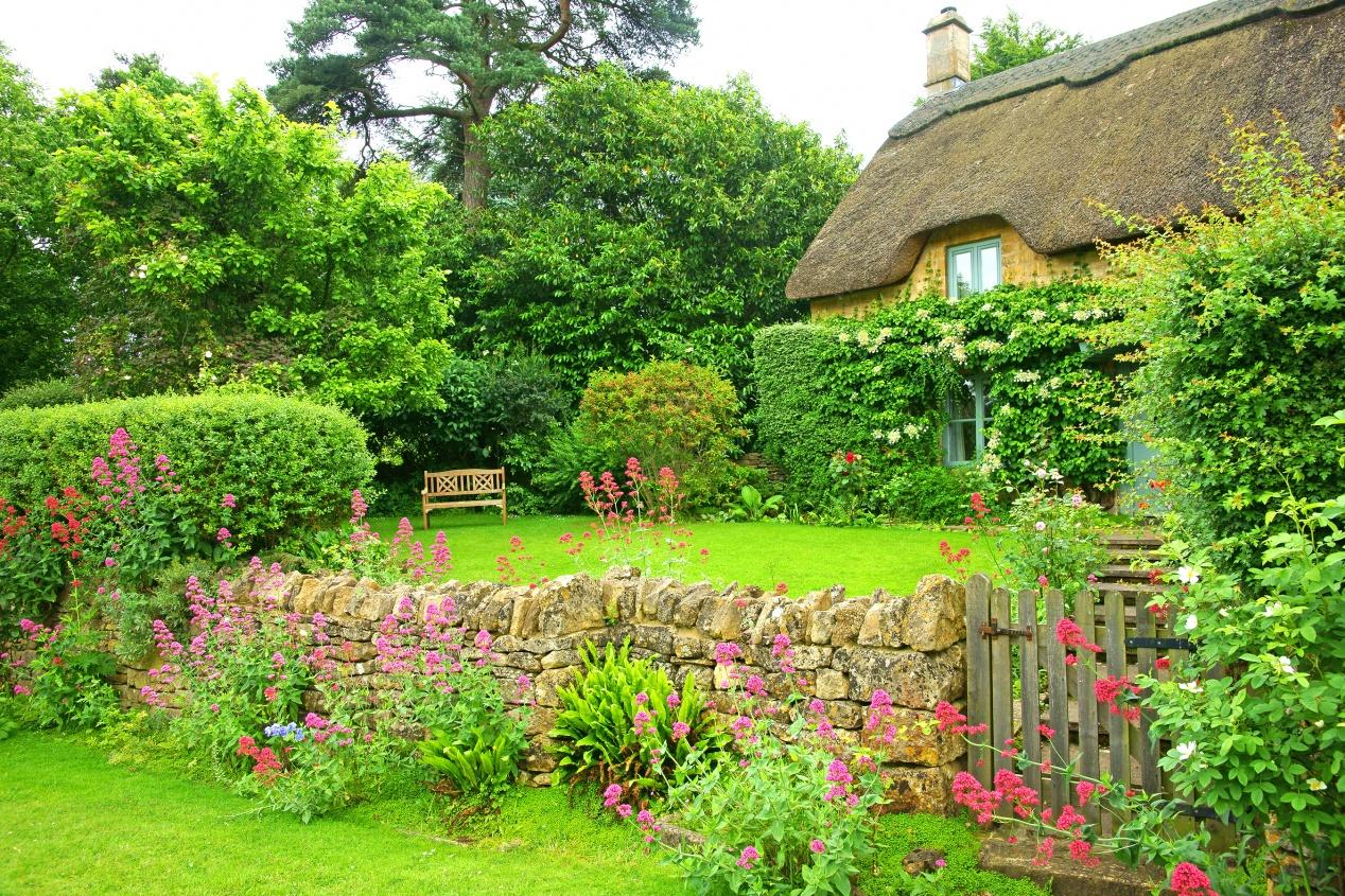 Plantes Pour Jardin Contemporain jardin anglais : la pause jardin, tout sur les jardins à l