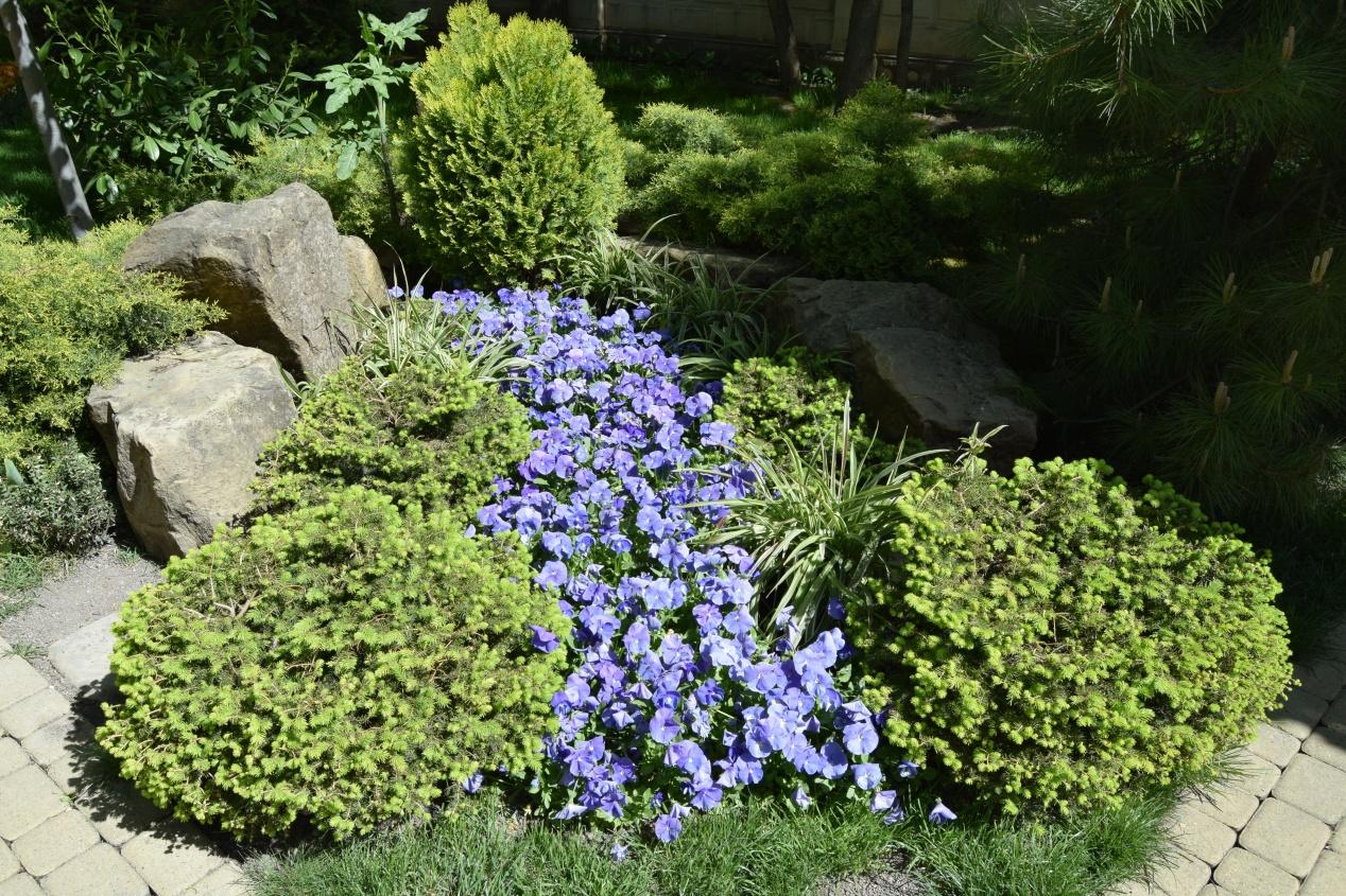 Aménagement D Un Parterre De Fleurs un jardin en pente : agencer et aménager un jardin en pente