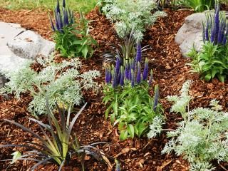 Finish your garden with decorative bark