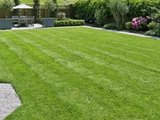 7 lawn care tips