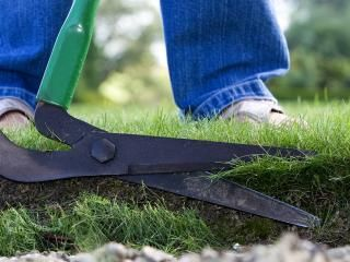 Lawn edging: a guide