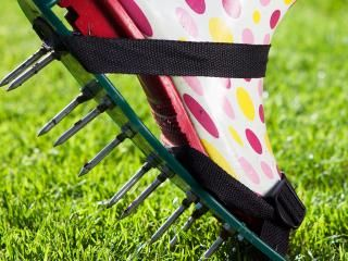 Using a lawn aerator: why, how and when?
