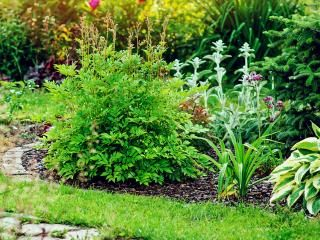 How to create an award winning garden
