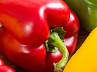 Peppers, Sweet Peppers, Bell Peppers (Capsicum annuum)