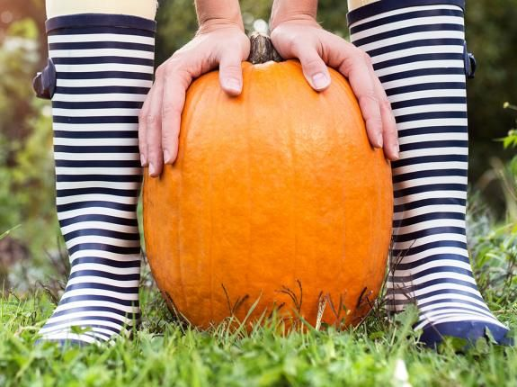 How to grow pumpkins for Halloween