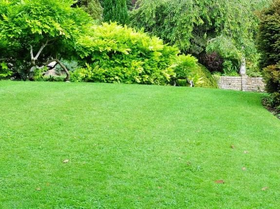 Maintaining Your Lawn Love The Garden