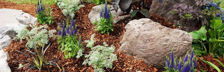Finish Your Garden With Decorative Bark Lovethegarden
