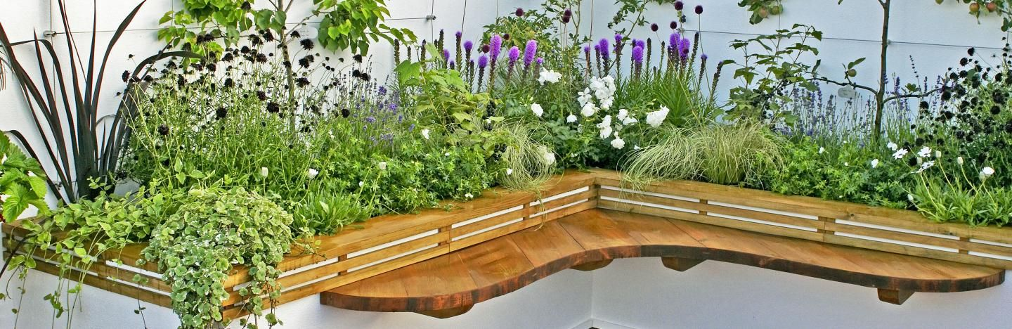 Growing Ideas For Raised Flower Beds