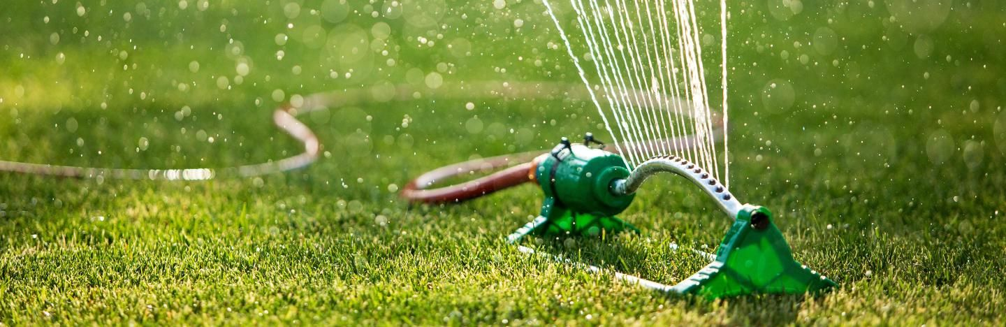 How to water a lawn