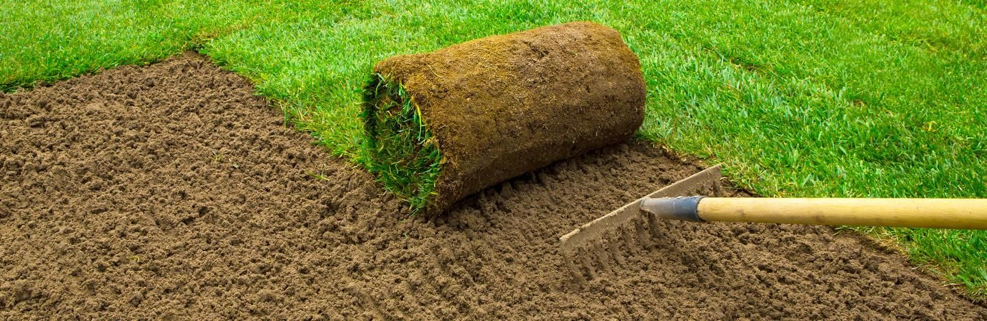 A Guide To Maintaining Your Lawn All Year Round Lovethegarden