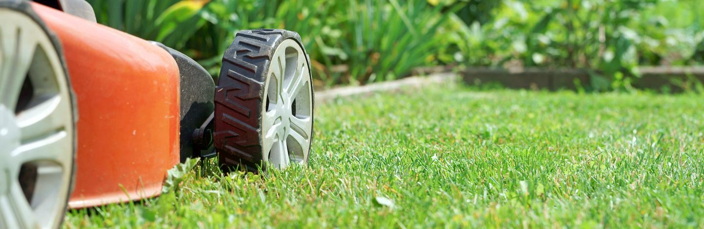 Top tips for lawn mowing