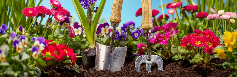 How To Kill Weeds In Flower Beds Lovethegarden