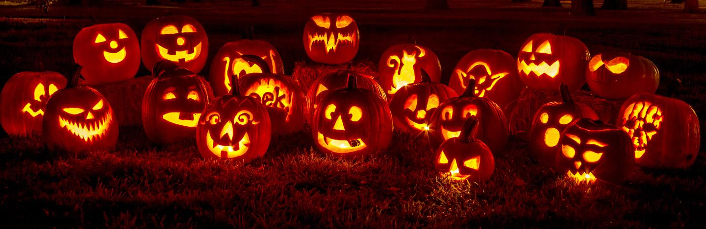Crazy Facts About Halloween Pumpkins Lovethegarden