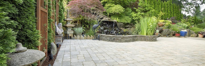 Un jardin (presque) sans entretien : plantes et potager sans ...