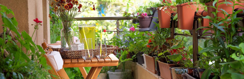 Top tips for balcony garden planters