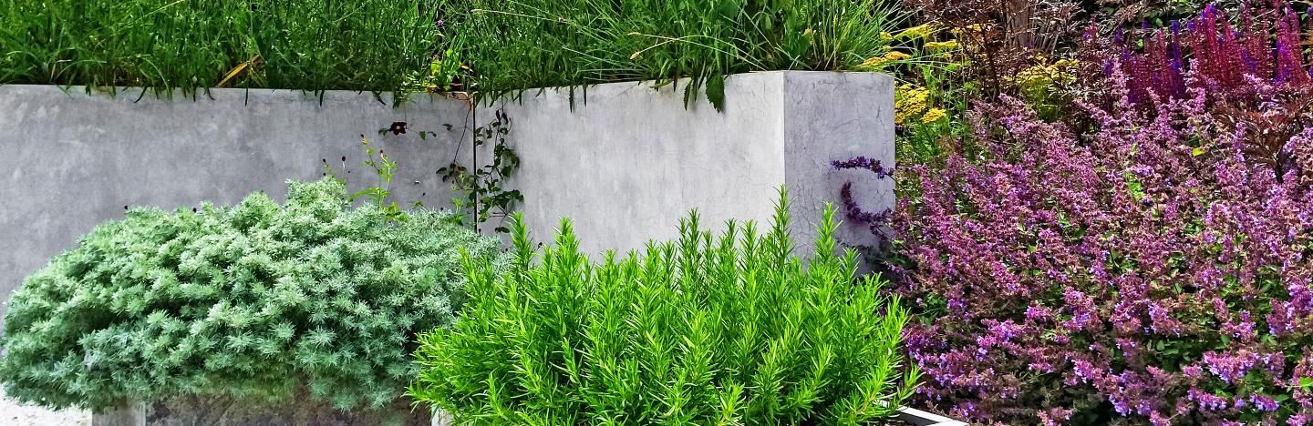 Concrete in your garden doesn't have to be ugly