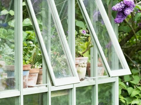 Top Tips For Greenhouse Garden Growing