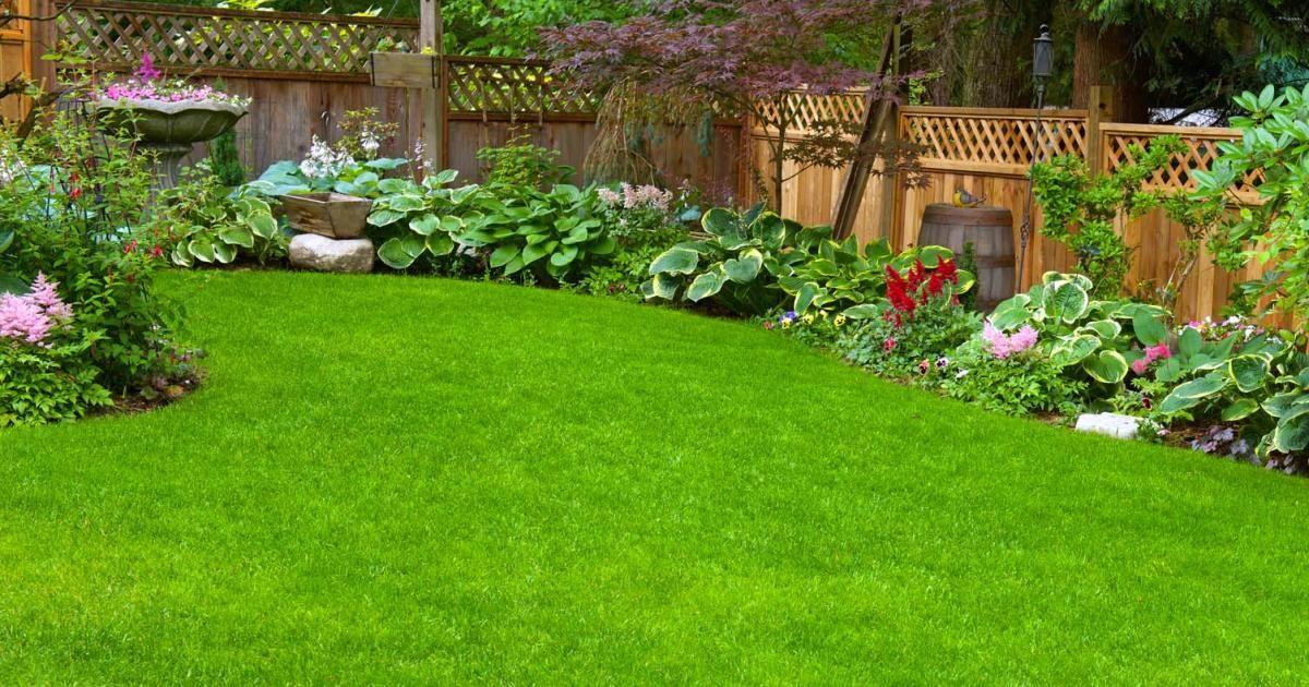 Lawn Care Basics Scotts Australia, Better Lawns And Gardens Little Rock