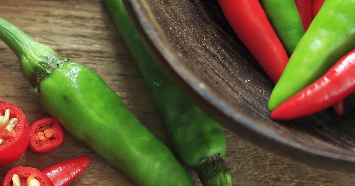 A complete guide to growing chillies | lovethegarden