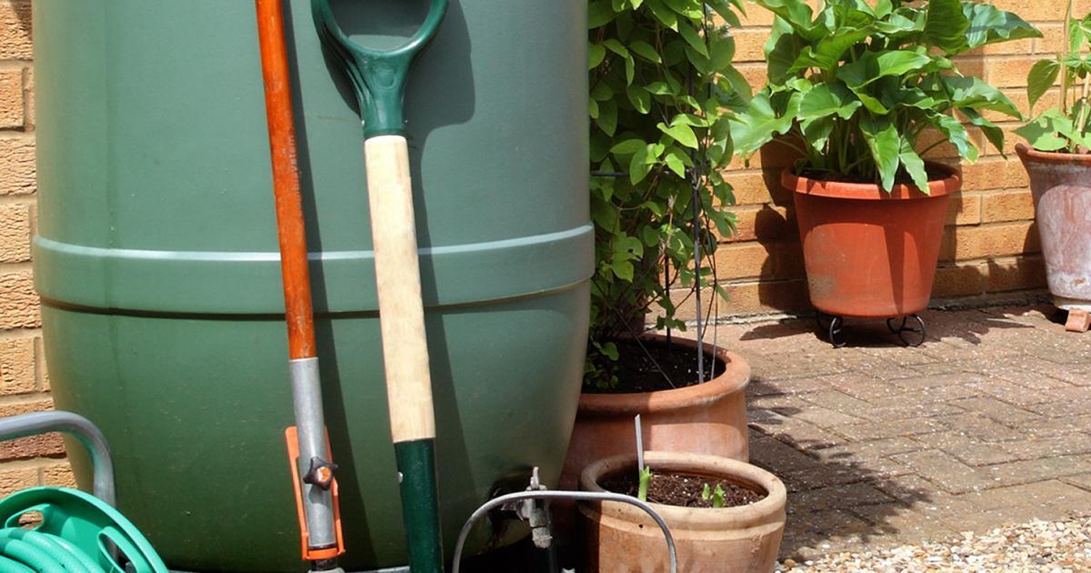 Connaitre son jardin | La Pause Jardin