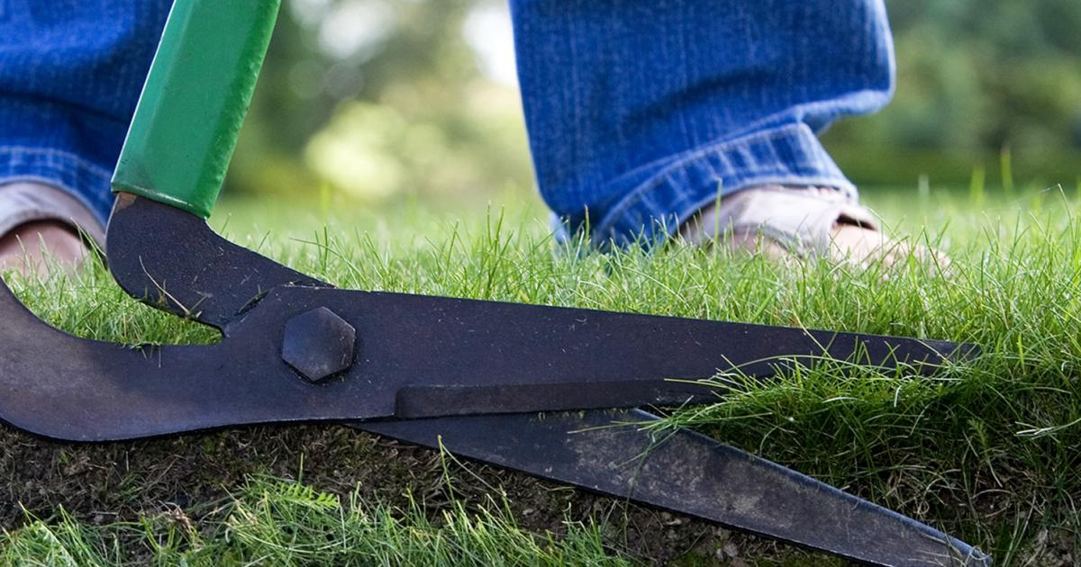 The complete guide to lawn edging lovethegarden