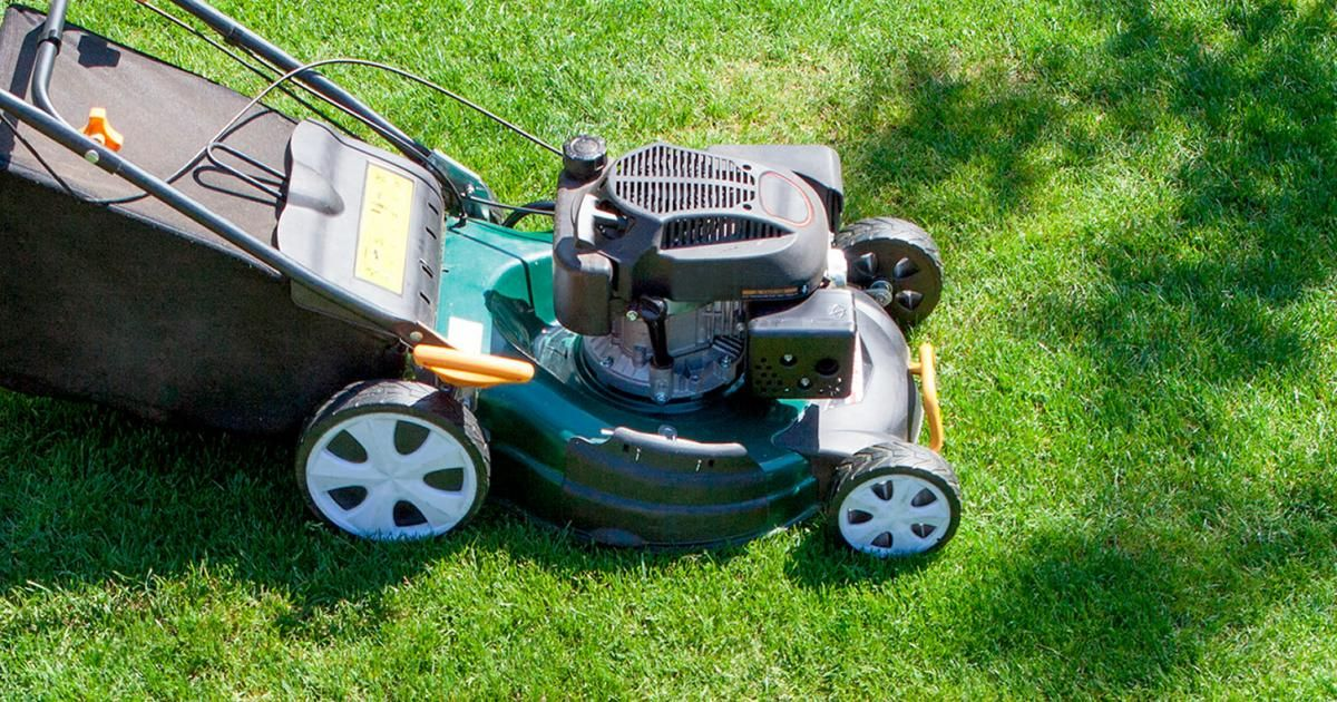 green patch lawn care kent