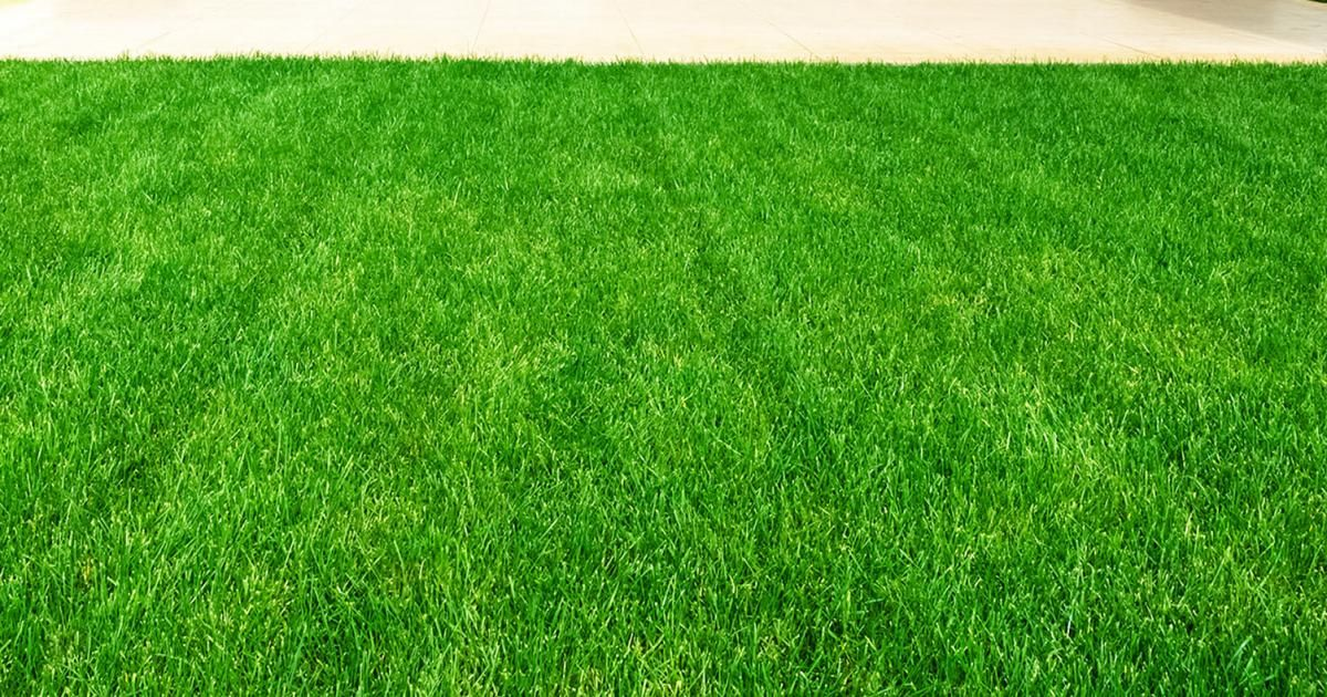 How To Dress A Lawn With Topsoil | lovethegarden