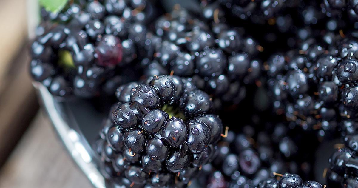 Images Blackberries Fruit