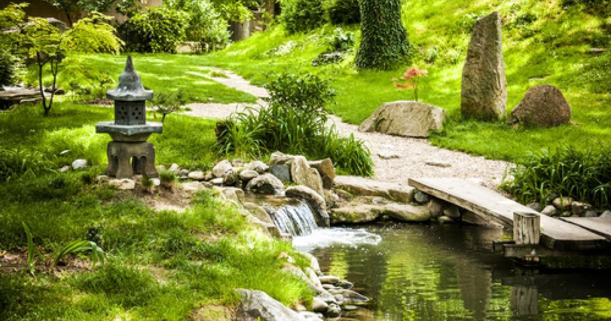 Jardin à la japonaise : La Pause Jardin, tout sur les jardins et massif Japonais