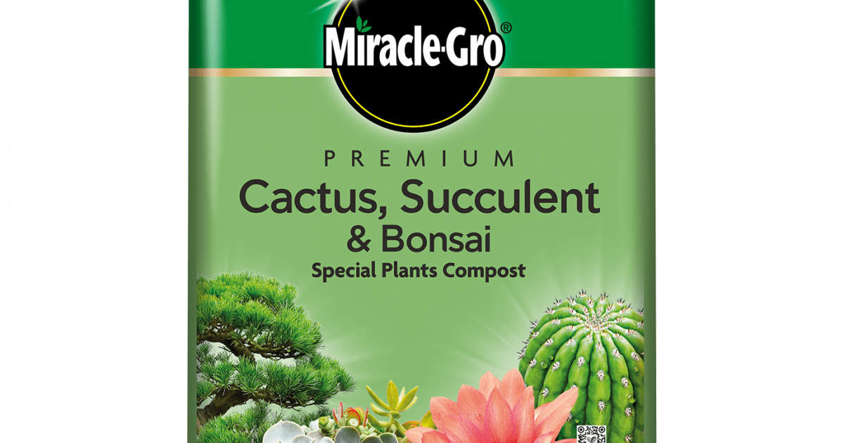 Compost 1 Litres of Cactus Potting Special Soil Formulated for Cacti